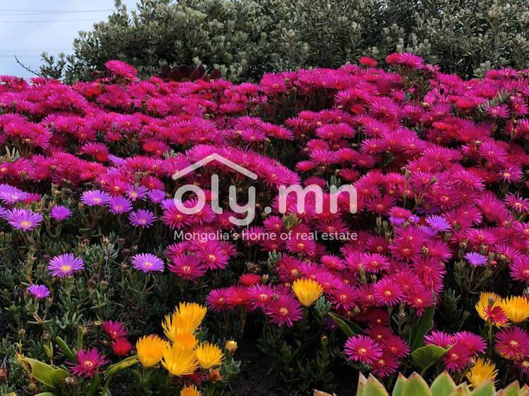 ID 2611, Bayangovi байршилд for sale зарын residential Apartment төсөл 1